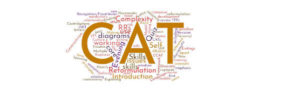 Word Cloud created from CAT Practitioner Training Programme